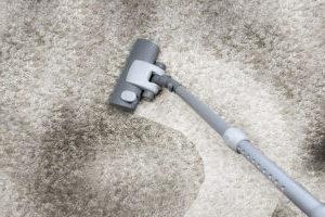 Чистка ковров и паласов по недорогим ценам